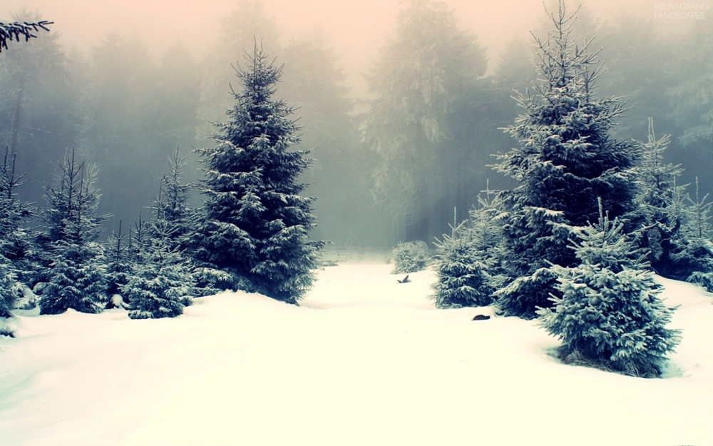 winter_snow_forest_landscapes_nature-wallpaper-breathtaking-landscape-104-1